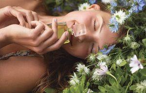Выбор парфюма